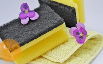 10 Tips voor een schoon huis en een schoon milieu