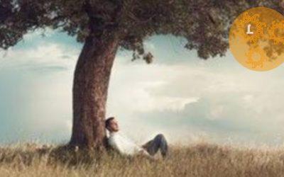 Een spiritueel roman om te inspireren: De Salon Filosoof