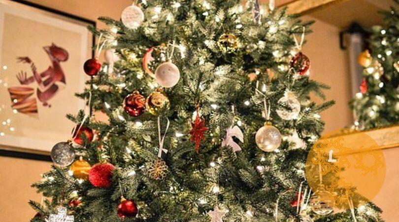Kerstbomen en duurzaamheid