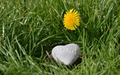 Kies jij ook voor geluk? 4 Tips!